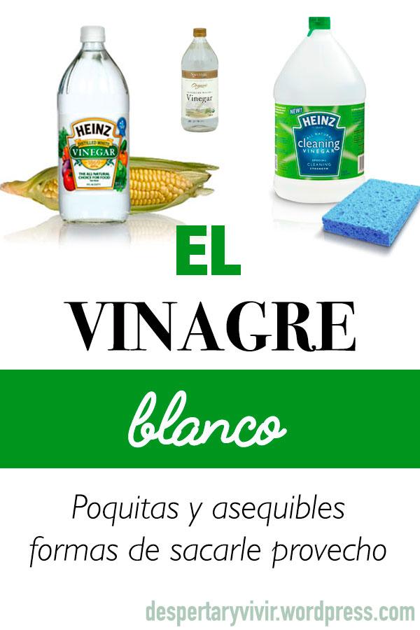 Aprende a utilizar el vinagre blanco de manera fácil para mantener tu casa limpia y libre de sustancias tóxicas y nocivas.