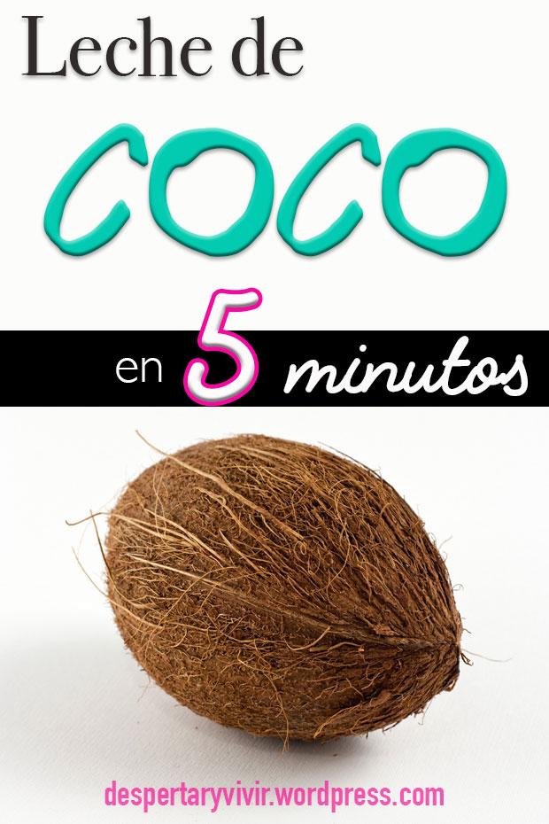 Haz tu propia leche de coco en 5 minutos con 2 ingredientes. Económica, sencilla y deliciosamente cremosa.